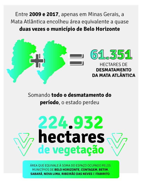 Números do desmatamento em Minas Gerais